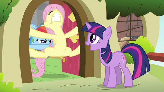 File:Twilight trying to convince Fluttershy S2E21.png