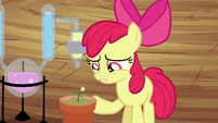 "Apple Bloom ""more or less"" S4E15"