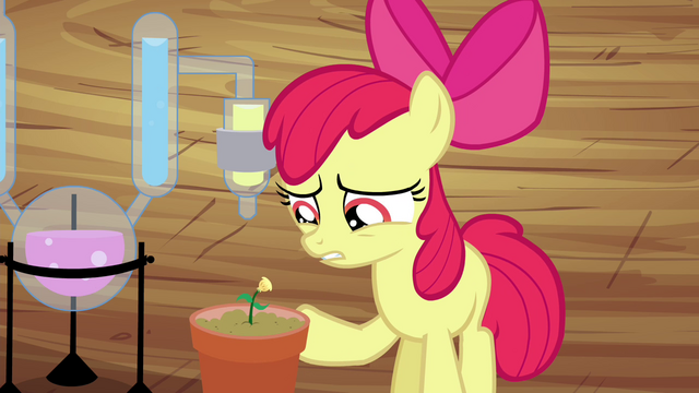 "File:Apple Bloom ""more or less"" S4E15.png"