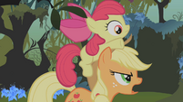 Applejack and Apple Bloom S01E09