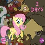 Season 4 promo Fluttershy with animals