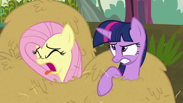 File:Twilight and Fluttershy covered in hay S5E23.png