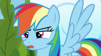 "Rainbow Dash ""nopony else is here"" S6E7"