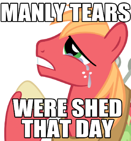 File:FANMADE Big McIntosh Manly Tears.png