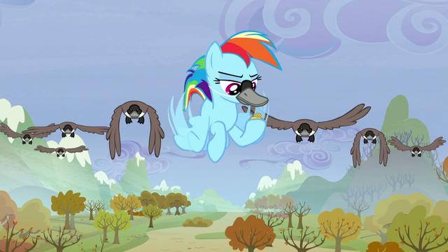 File:Rainbow looks at compass S5E5.png