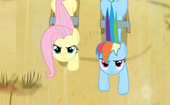 File:Fluttershy and Rainbow Dash pulling the cart S2E14.png