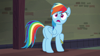 Rainbow Dash gasping in shock S6E13