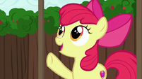 "Apple Bloom ""somethin' a little more modern"" S6E14"