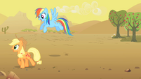 Applejack and Rainbow Dash S01E21