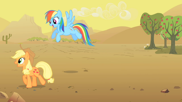 File:Applejack and Rainbow Dash S01E21.png