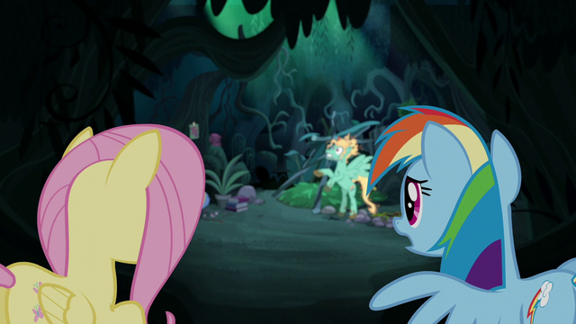 "File:Rainbow Dash ""I know he needs to learn"" S6E11.png"