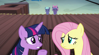 "Twilight ""why does everypony assume we're spies?"" S5E23"