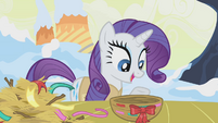 Rarity explaining the birds' nests S1E11