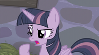 "Twilight ""And I don't remember any of them being a staff"" S5E02"