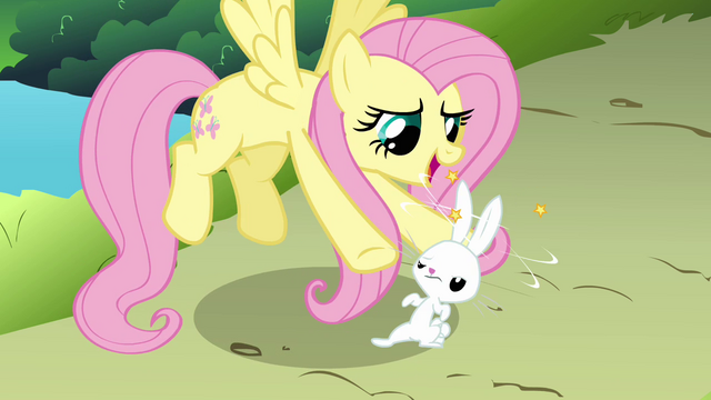 File:Fluttershy and dizzy Angel S03E10.png