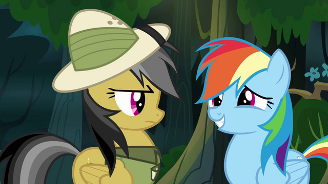 "File:Rainbow Dash ""give me a chance"" S4E04.png"