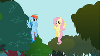 Fluttershy says ouch S01E10