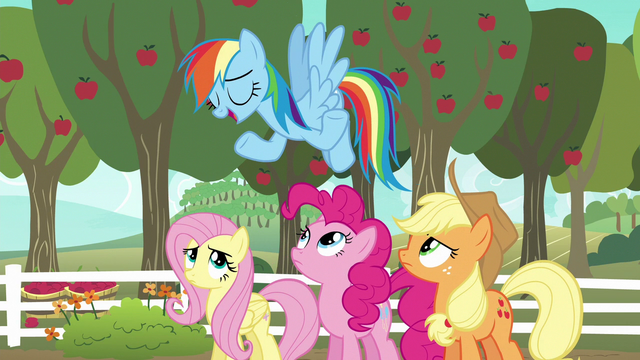 "File:Rainbow Dash ""I'm kind of an expert"" S6E18.png"