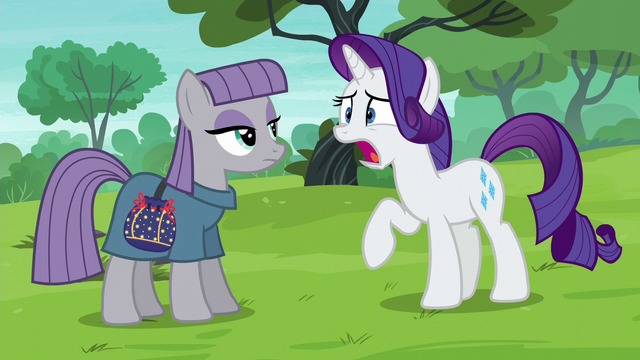 File:Rarity tells Maud the truth S6E3.png