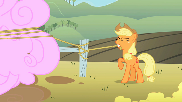 File:Applejack tying rope to a fence post S2E01.png