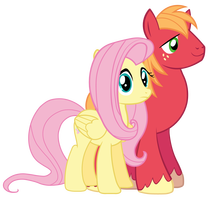 File:FANMADE Fluttershy and Big McIntosh.png