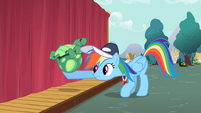 Rainbow Dash lifting Tank up S2E07
