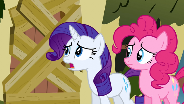 File:Rarity asking Fluttershy S2E19.png