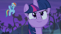 Twilight's face of confidence S4E07