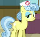 Nurse Snowheart ID S2E16