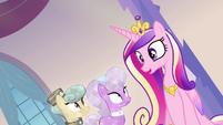 """Princess Cadance """"all the precise instructions"""" S03E12"""
