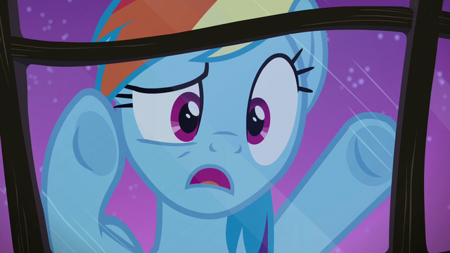"File:Rainbow Dash ""where is everypony?"" S6E15.png"