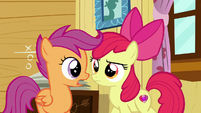 "Scootaloo ""What do you mean?"" S6E4"