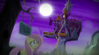 Fluttershy approaching the castle S5E21