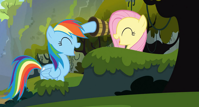File:Rainbow Dash and Fluttershy high-hoof S3E09.png