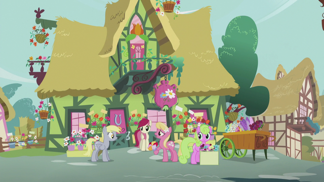 File:Derpy talks to the flower ponies S5E9.png