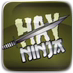 File:Hay Ninja.png