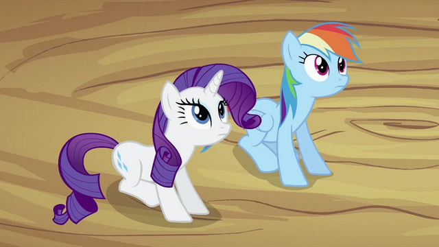 File:Rarity and Rainbow Dash S2E03.png
