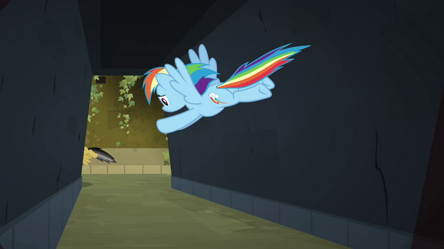File:Rainbow Dash flying after Daring S4E04.png