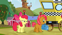 "Apple Bloom ""I can't wait"" S3E8"