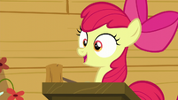 "Apple Bloom ""The first post-cutie mark meetin'"" S6E4"