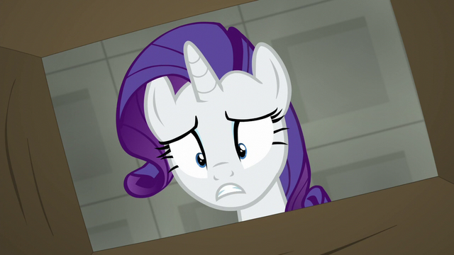 "File:Rarity ""my merchandise shipment from Ponyville"" S6E9.png"