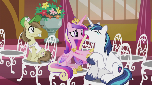 File:Princess Cadance comforting Shining Armor S5E9.png