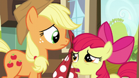 Apple Bloom suggest Applejack to tell the map to wait a few days S5E17