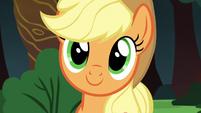 Applejack listening to Rainbow Dash S6E18
