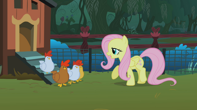 File:Fluttershy and the chickens S01E17.png