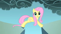 Fluttershy realizes the gap is not big S1E07