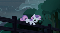 Sweetie Belle climbs onto the fence S5E6