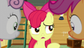 "Apple Bloom ""I don't know"" S6E4.png"