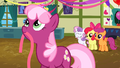 Cheerilee with ribbon in mouth S2E17.png