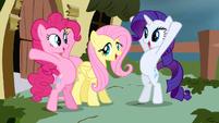 Rarity & Pinkie Pie around Fluttershy S2E19